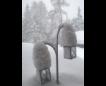 Winter/Frühjahr 2018